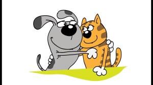 сделать анализы крови собаке и кошке в обнинске